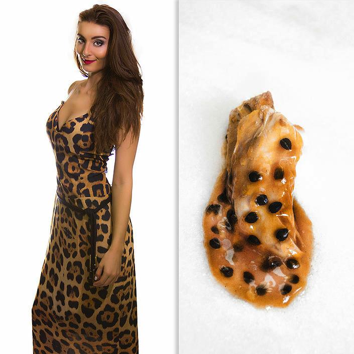 Fashion Food: Vestido de Onça x Molho de Maracujá