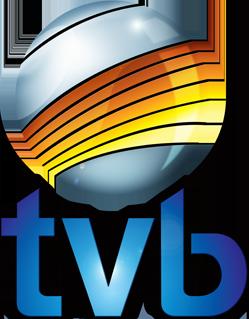 TVB Record